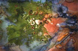 lichen-detail-500